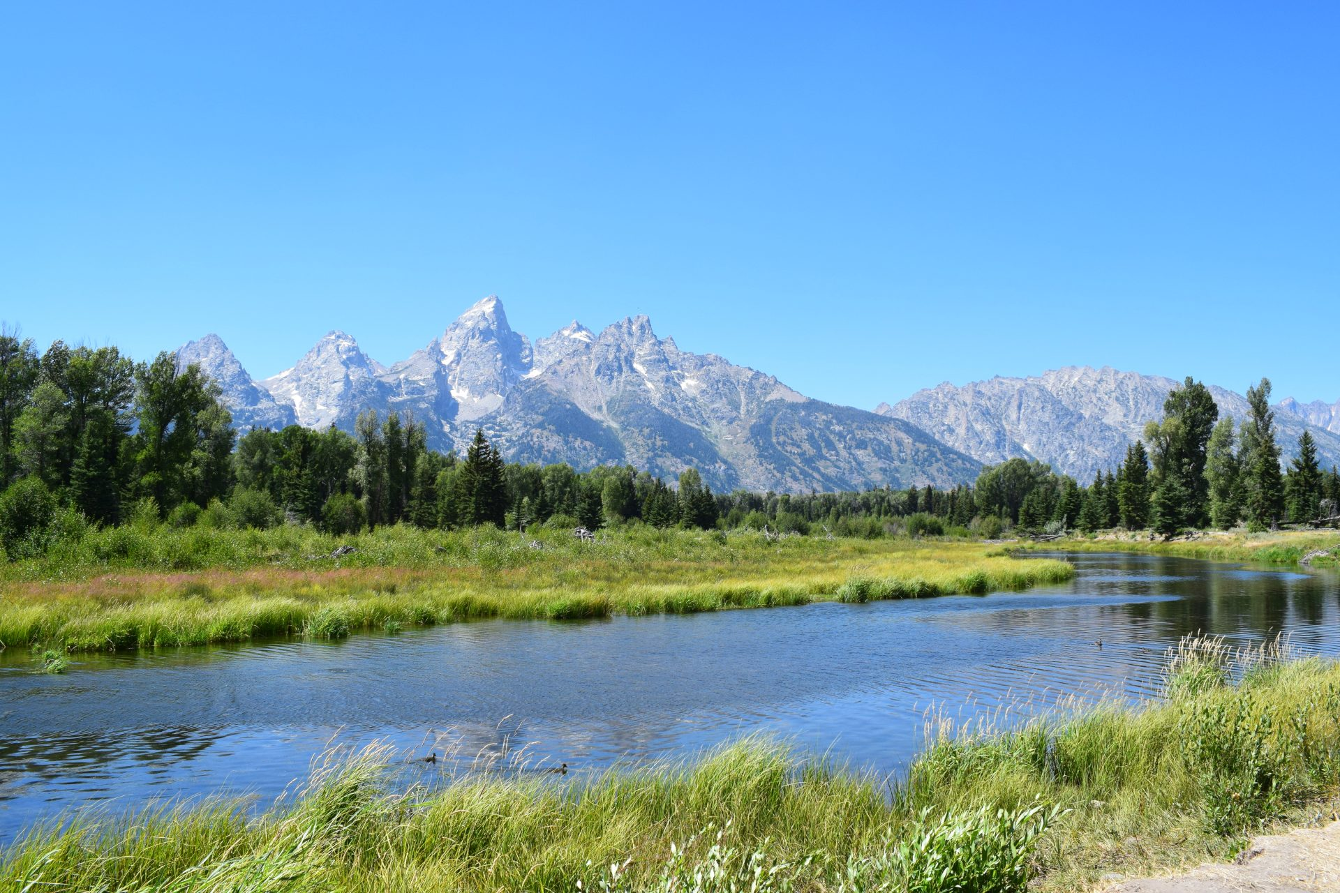 A flowing river in front of mountains